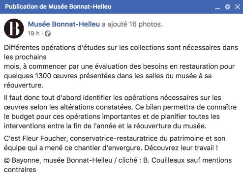publi musée Bonnat-Helleu